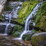 Dunnfield Creek Waterfall, Appalachian Trail. Warren County, Nj #hiking #photography #nature #waterfalls #nj - via @gvphotographics