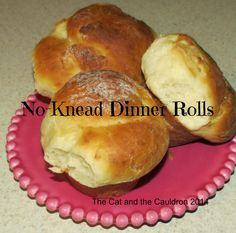 The Cat and the Cauldron: Pinterest Project #111 No-Knead Dinner Rolls The Pioneer Woman