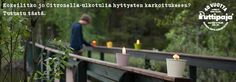 citronella ulkotulet Citronella, Candles, Candy, Candle Sticks, Lemon Grass, Candle