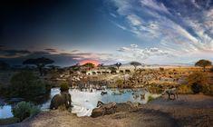 Seronera National Park, Serengeti, Tanzania  PHOTOGRAPH BY STEPHEN WILKES