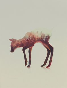 Double Exposure Combines Beautiful Wild Animals with Amazing Mountainous Scenery - Explore like a Gipsy, Study like a Ninja