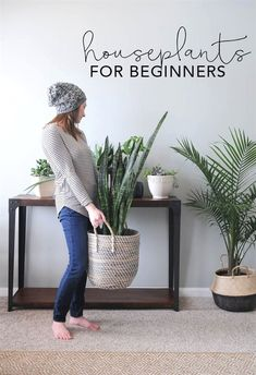Flower Gardening For Beginners Houseplants for Beginners! I feel like because I over love, I over water :( - Houseplants add texture and color and go with any style of home decor. Use these tips to learn the basic of how to keep houseplants alive! Easy Home Decor, Home Decor Styles, Home Decor Accessories, Decorative Accessories, Plantas Indoor, Decoration Plante, Green Decoration, Inside Plants, Home Design