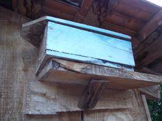 Na propriedade dos Fritzen, encontramos também uma caixa de abelhamirim. Ela é uma espécie dócil e adapta-se muito bem a qualquer ambiente. Seu mel é muito nobre e custa aproximadamente cinco vezes o mel das abelhas afro-brasileiras com ferrão.