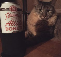 """I was way too excited for @gansettbeer Allie's Donuts Double Chocolate Porter. If your from Rhode Island and you've been to Allie's Donuts then you know…"""