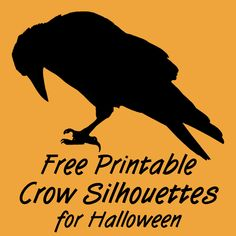 Free Printable Black Crow Silhouettes for Halloween Raven Bird Printables Images Pictures Halloween Fonts, Halloween Silhouettes, Halloween Patterns, Halloween Raven Decorations, Crow Pictures, Crow Images, Bird Stencil, Damask Stencil, Stencil Patterns