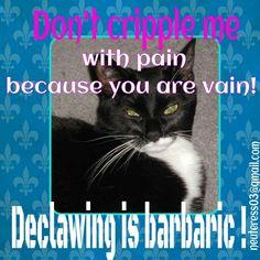 Anti declaw