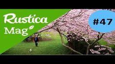 Lutter naturellement contre les maladies et parasites du jardin avec rustica.fr