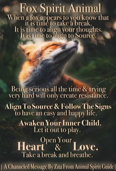 How to Magically Manifest an Epic Life. Spirit Animal Fox, Fox Spirit, Animal Spirit Guides, Animal Meanings, Signs From The Universe, Spiritual Animal, Dream Meanings, Spiritual Meaning, Pet Fox