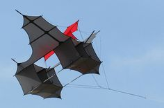 Cody war kite! | This kite was used before the invention of … | Flickr - Photo Sharing!