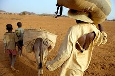 Issou Agali, a slave, with his two sons Abou Bakar and Ibrahim bring cattle dung to fertilize the master's fields. National Geographic, Stuart Franklin, Street Photography, Travel Photography, World Press Photo, Photographer Portfolio, Magnum Photos, Photojournalism, Master Class