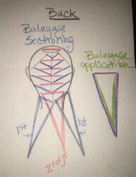 How to balayage. Idea from the web.                                                                                                                                                      More