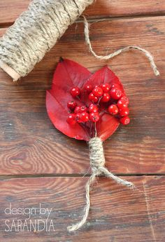 Rowan berries and red leaves - the perfect boutonniere for rustic fall wedding!