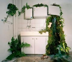 installations by daniel aires grazina