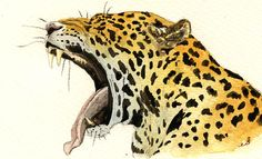 PRINT-Jaguar Leopard panther head african by SanMartinArtsCrafts