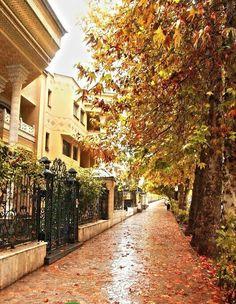 Residential Street in Shiraz - Iran