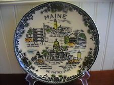PINE TREE STATE! Vintage Hand Colored Maine State Plate