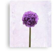 Canvas Print Mini #redbubble  #wallart #canvas #alium #flowers  #plants