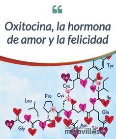 Oxitocina, la hormona de amor y la felicidad La #oxitocina es una #hormona #multipropósito de la cual, se desconocen aún todas y cada una de sus funciones en nuestro cerebro. #Psicología