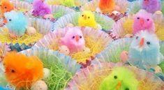 Leuke traktatie voor in het voorjaar, nestjes met chocolade-eitjes