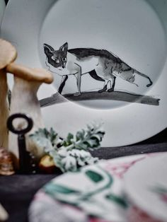 © Gregor Titze, Visual ConcepT & Stylist Sarah Riga Riga, Highlights, Concept, Tableware, White Rabbits, Mad Hatters, Cup And Saucer, Alice In Wonderland, Animal Themes