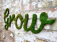 How to Make Moss Graffiti. Creating living, breathing moss graffiti is an eco-friendly and exciting way to make art! Also called eco-graffiti or green graffiti, moss graffiti replaces spray paint, paint-markers or other such toxic. Outdoor Wall Art, Outdoor Walls, Outdoor Living, Outdoor Spaces, Moss Grafitti, Graffiti En Mousse, Garden Art, Garden Design, Moss Garden