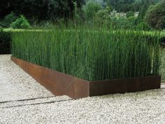Rusty retaining wall with reeds and pea gravel