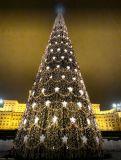 Targul de Craciun Bucuresti pana pe 26 Decembrie Tower, Christmas Tree, Holiday Decor, Building, Shopping, Home Decor, Teal Christmas Tree, Decoration Home, Computer Case