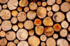 wood, logs, lumber