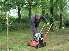 Bekæmpelse af mos i græsset (Græsplæne)