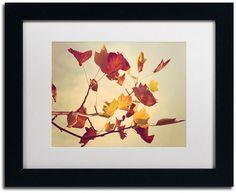Add a touch of natural beauty to any room with this framed wall art from Trademark Fine Art. <ul> <li>Lovely autumn leaves design</li> <li>Matted framing PRODUCT DETAILS</li> <li>Small: 11''H x 14''W x 0.5''D</li> <li>Large: 16''H x 20''W x 0.5''D</li> <li>Canvas, MDF</li> <li>Attached sawtooth</li> <li>Horizontal display</li> &