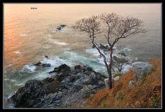 Panoramio - Photos by J.Ernesto Ortiz Razo > ocean
