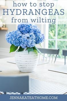 These simple tips will keep your hydrangeas from drooping and wilting, and extend their life to 2 or 3 weeks! Now you can enjoy those big beautiful blooms for longer! Big Flowers, My Flower, Fresh Flowers, Flower Ideas, Outdoor Plants, Outdoor Gardens, Outdoor Spaces, Beautiful Flower Arrangements, Beautiful Flowers