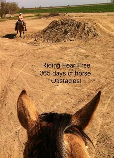 Simple obstacles can really boost you and your horses confidence as a team.