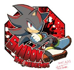 Shadow the Hedgehog Shadow The Hedgehog, Sonic The Hedgehog, Hedgehog Art, Silver The Hedgehog, Shadow And Amy, Sonic And Shadow, Shadow Images, Sonic Mania, Sonic Franchise