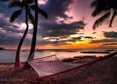 the hammock by alierturk