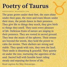Taurus Traits, Cancer Rising, Pisces Moon, Rose Trees, Fun Facts, Poetry, Bloom, Astrology, Horoscopes