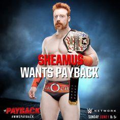 WWE Payback 2014, Sheamus