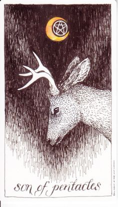 Son of Pentacles - Tarot of the Wild Unknown