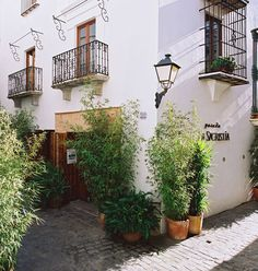 Posada La Sacristia, Tarifa (stayed last summer and thoroughly recommend)     http://www.boxvot.es/Rankings/Pequenos-Hoteles-con-Encanto-en-Andalucia