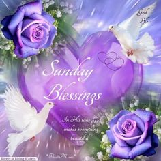 sunday blessings quotes and images Happy Sunday Quotes, Blessed Sunday, Blessed Quotes, Morning Quotes, Good Sunday Morning, Sunday Love, Scripture Quotes, Bible Verses, Scripture Pictures