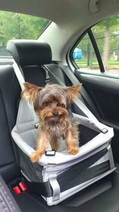 Adoro passear de carro;)            Yalkee.