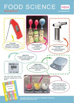 Food Science Posters - set of 4 - ready June Food Science Experiments, Teaching Science, Food Safety And Sanitation, Green Grapes Nutrition, Science Equipment, Food Technology, Work Meals, Nutrition Activities
