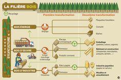 la filière bois, comment çà marche? Le Département de la Haute-Savoie s'investit sur le développement économique d'un pôle Bois, en partenariat avec la Savoie. #Dep_74 +d'infos www.cg74.fr