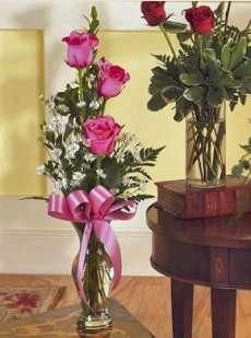 """BUD VASE (Any Color)."""" This delicate design of three roses & accent flowers such as baby's breath, greenery, and a matching bow is designed in a clear glass bud vase, available in the color of your choice! Valentine's Day Flower Arrangements, Mothers Day Roses, Valentine Baskets, Three Roses, Valentines Flowers, Sola Flowers, Clear Glass Vases, Pink Bouquet, Flower Delivery"""