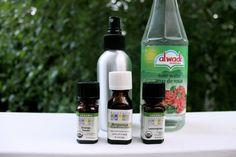 DIY: Drive the pests away with homemade bug spray