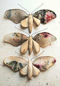 3 Flower moths.