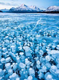 Lago Abraham, Canadá. Las burbujas que se ven son metano congelado. Este gas es muy inflamable, por eso hay que tener cuidado si vas con cerillas por la zona, como puedes ver aquí.
