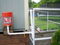 Cage Free Monkeys: Chicken Auto Watering System