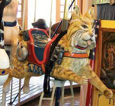 Empire State Carousel  Wildcat Jumper      © Jean Bennett