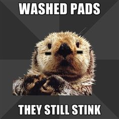 Roller Derby Otter - Washed pads they still stink *washed them again, STILL stink!*